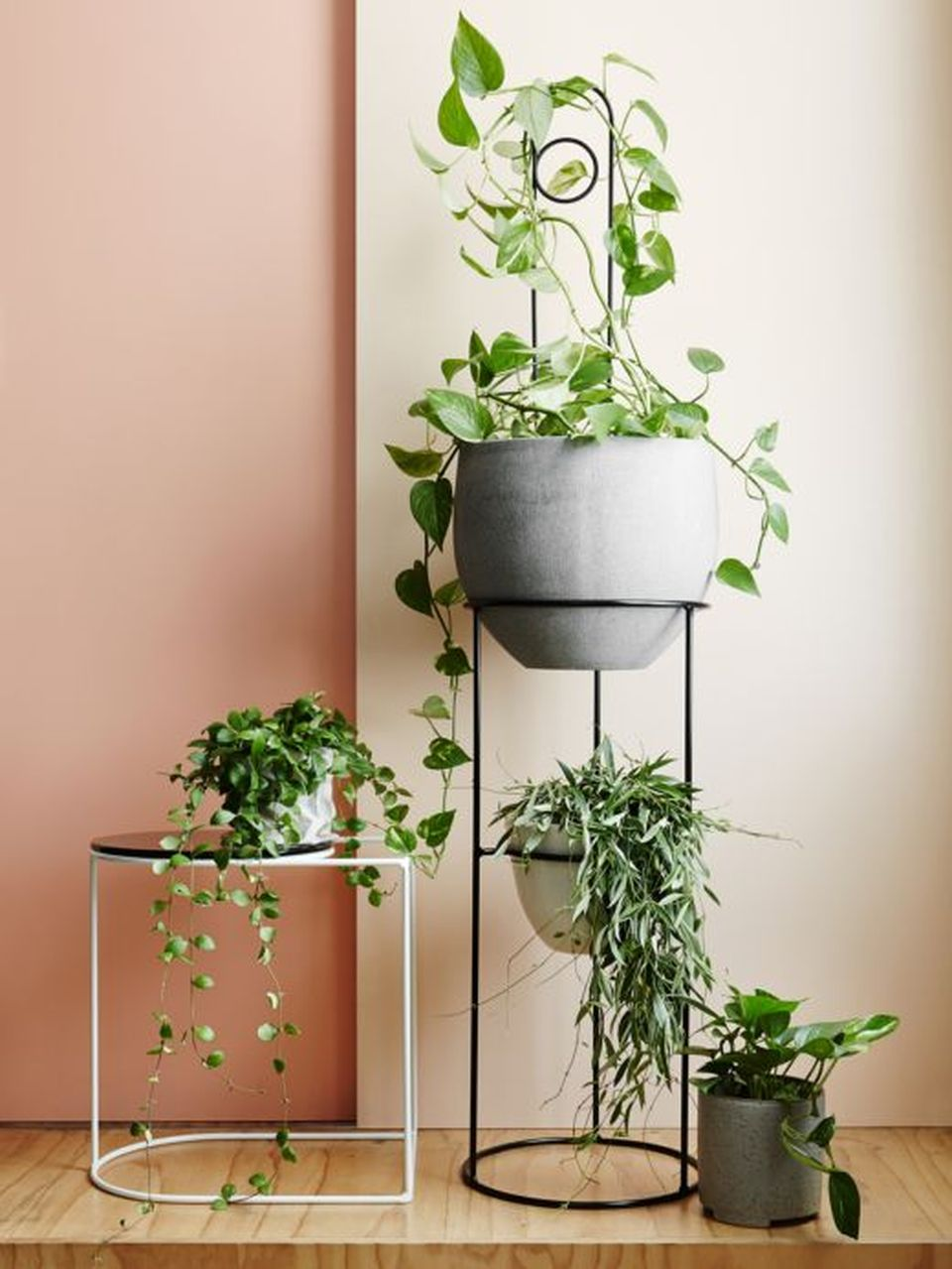 Cool Plant Stand Design Ideas For Indoor Houseplant 77 Rockindeco
